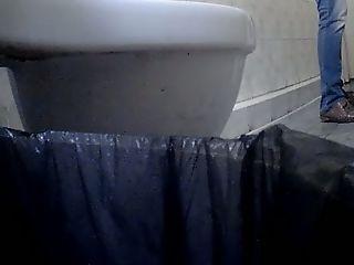 BBW, Hidden Cam, MILF, Pissing, Toilet, Voyeur, White,