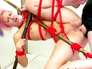 Amateur, Anal Sex, Ass To Mouth, Bondage, Fucking Machine, Gaping Hole, Gokkun, Rough,